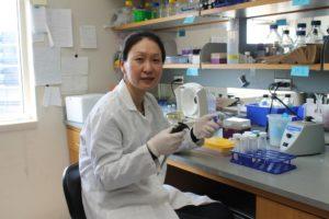 Assistant Professor Jiaoyang Jiang